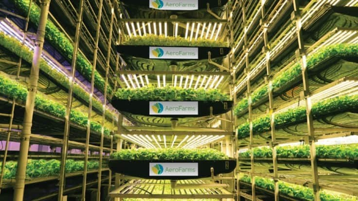AeroFarms recognized by Fast Company for third consecutive year
