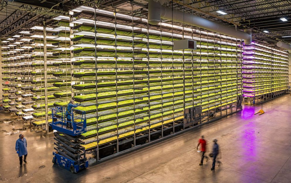 Vertical farming company AeroFarms is making vegetables tastier and feeding communities in need